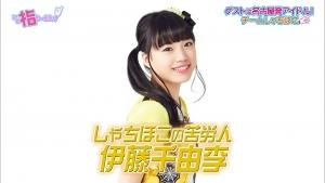 teamsyachi_konoyubi_013.jpg