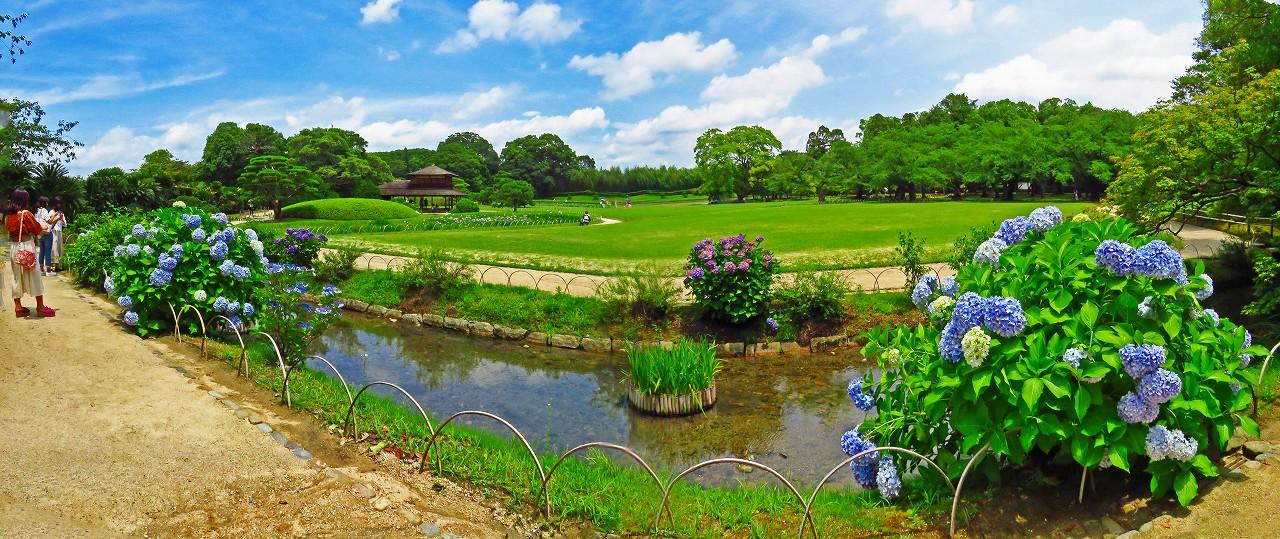 20170701 後楽園今日の藤棚付近の曲水越えに眺めた園内ワイド風景 (1)