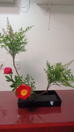 第2盛り花