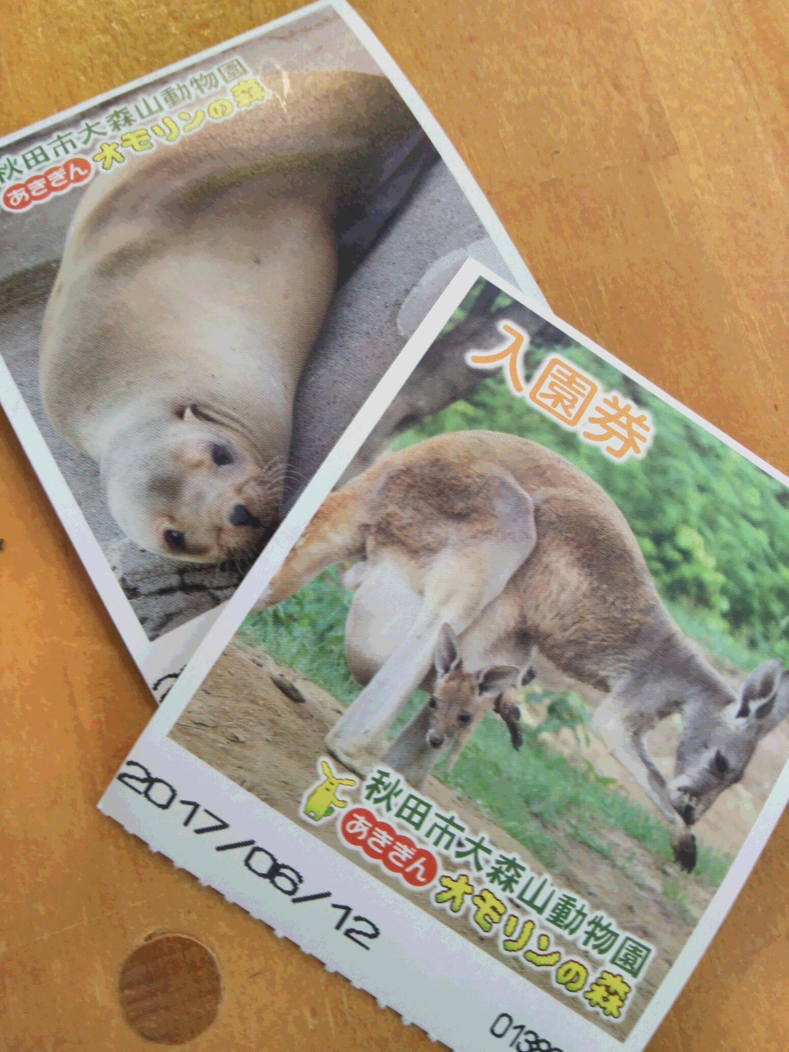 大森山動物園 入場券