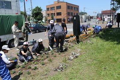 2017-06-06 紅志高校 駅前公園植栽 (6)