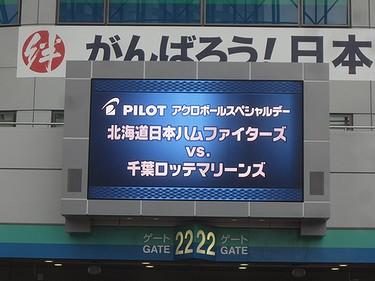 20170514日ハム (1)