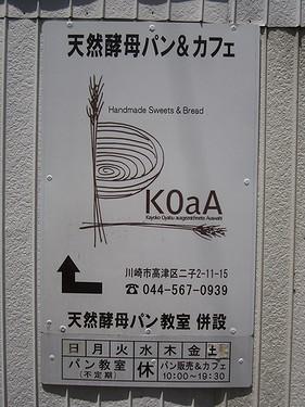 20170603お散歩 (8)