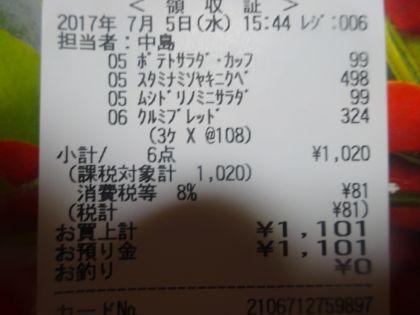 mini_DSC01989_20170705191205fcf.jpg