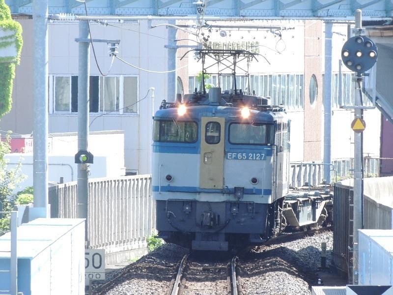 DSCN1980.jpg