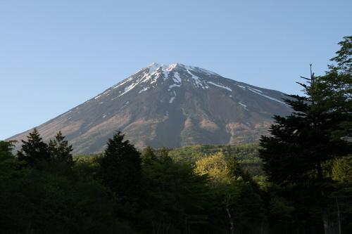西臼塚から夏富士