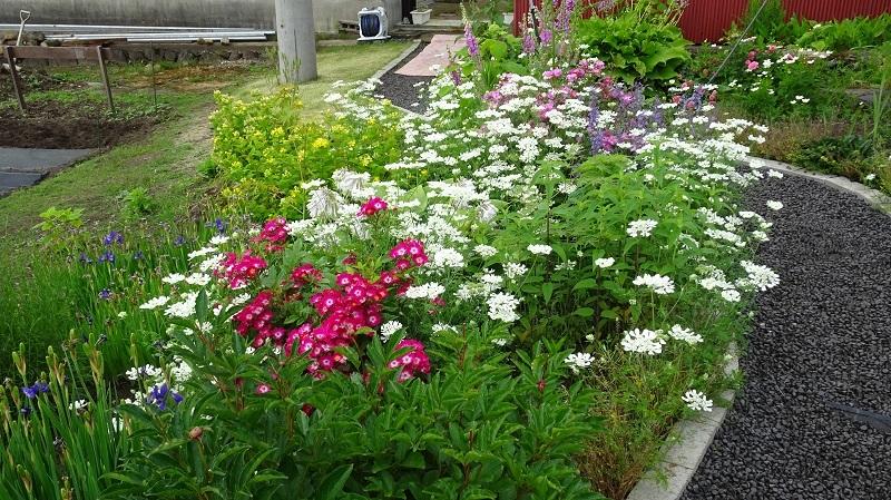 花のプロムナード