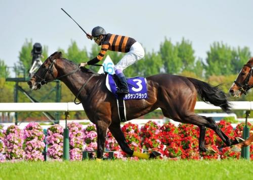 【競馬】急募!キタサンブラックを宝塚で負かす方法