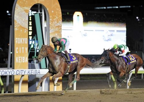 【競馬】帝王賞馬ケイティブレイブさん、ガチで放牧先がない模様。今後も厩舎で様子を見る