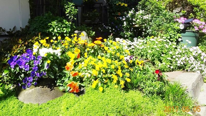 DSC08682玄関前花盛り