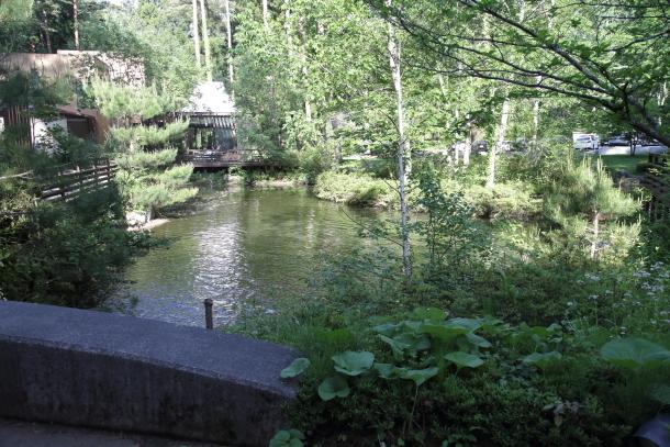 河口湖00017050