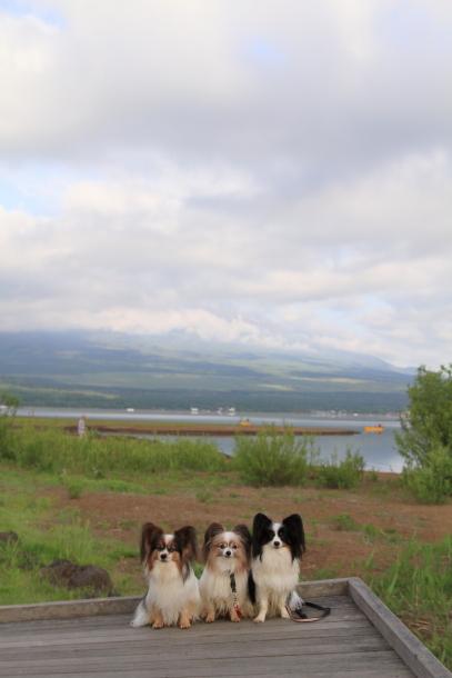 山中湖 00019943