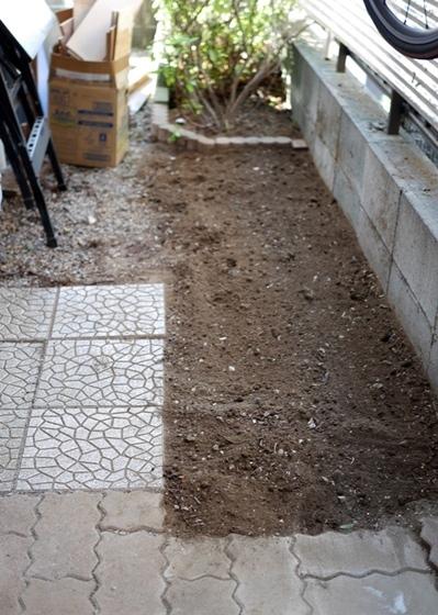 ツツジ根掘り