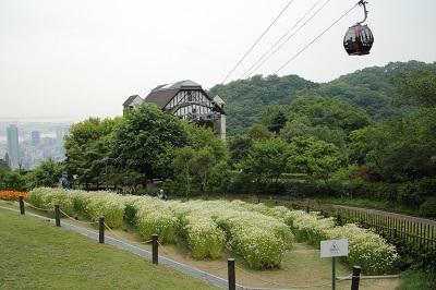 ss神戸ハーブ園14