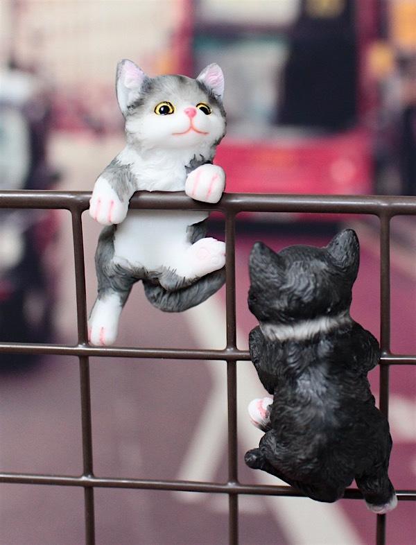 20170626100yen-cats1.jpg