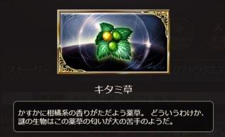 yuzuu (1)