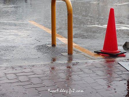 雨を美しく撮るのは難しい 2