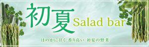 salad_earlysummer_2017_1.jpg