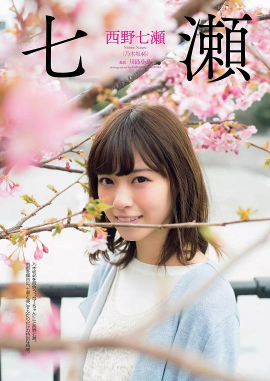 2017 桜 西野七瀬