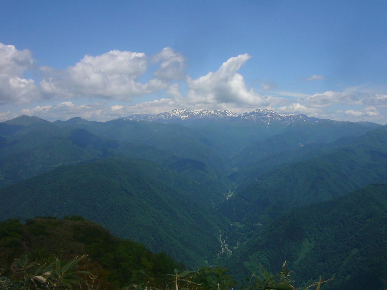 荒島岳から3の峰~経ヶ岳 H29.6.05