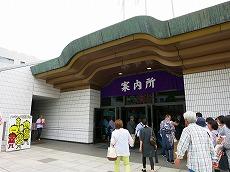 IMG_2563-ryougokuisu.jpg