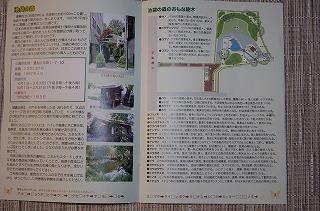 s-IMGP4184.jpg