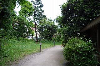 s-IMGP4258.jpg