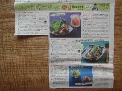 オントナ香味野菜