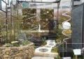 風・光・水と戯れる都会の庭