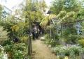 個人宅の庭