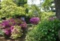 茶陶苑の庭