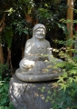 厳しい顔の羅漢像
