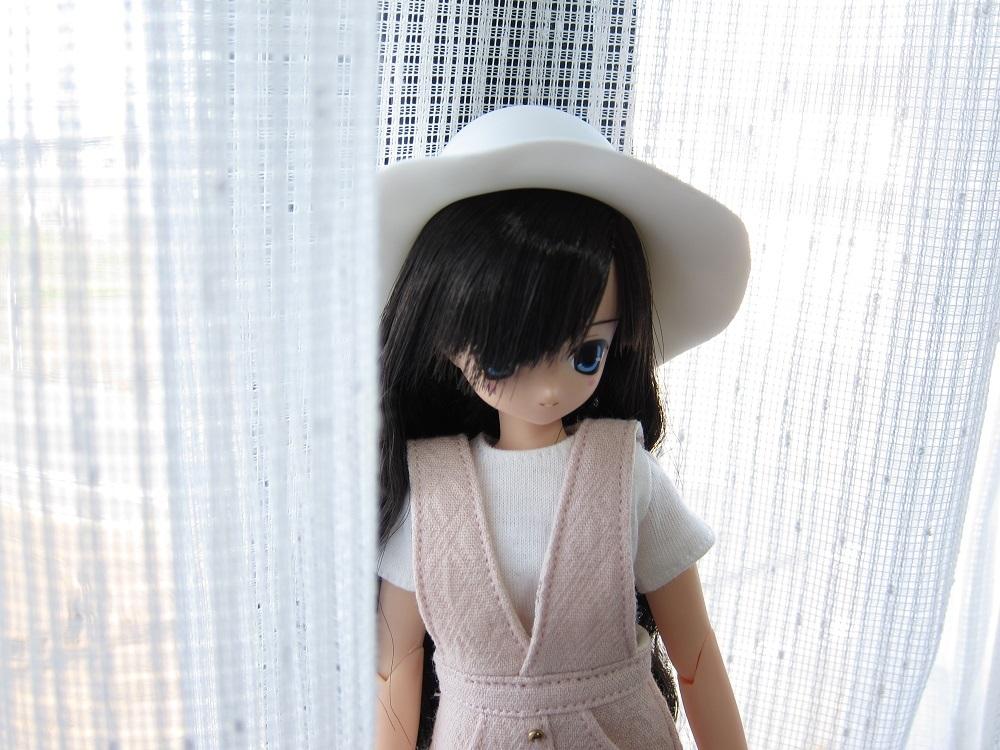 siroiaika (4)