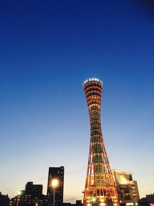 yuki_t170520_3.jpg