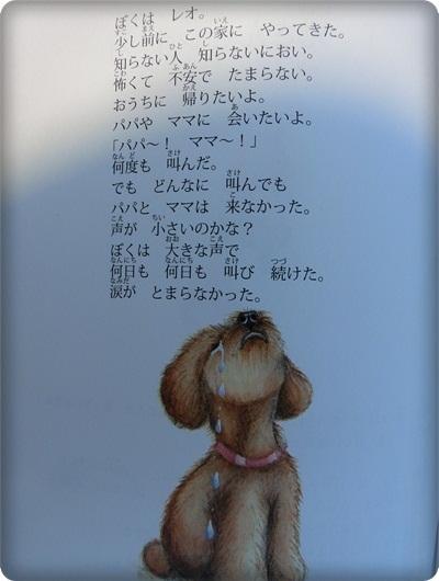 ハレル絵本1031