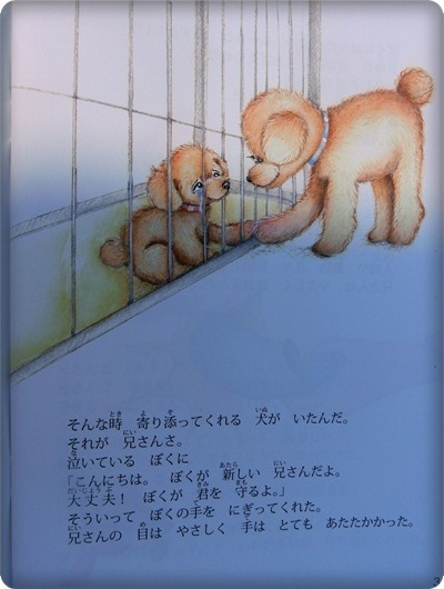 ハレル絵本1032