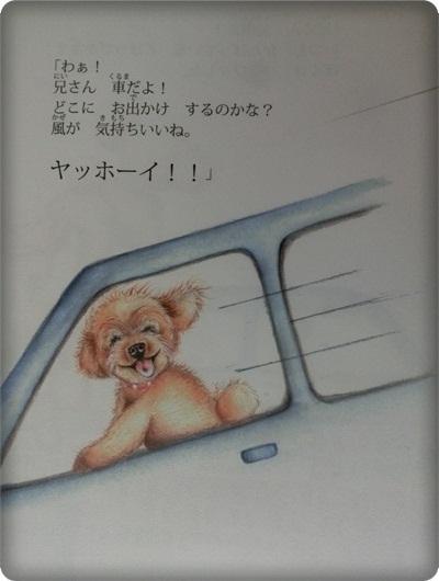 ハレル絵本2013