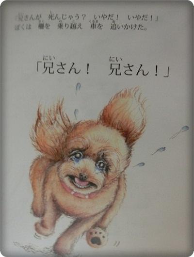 ハレル絵本2049