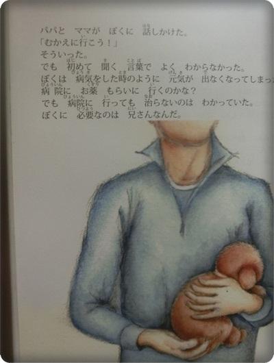 ハレル絵本2052