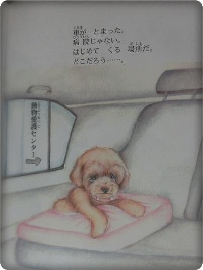 ハレル絵本2053