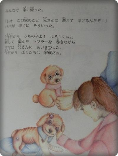 ハレル絵本2055