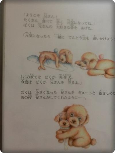 ハレル絵本2056