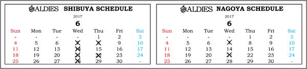 ブログ用営業日カレンダー2017年6月