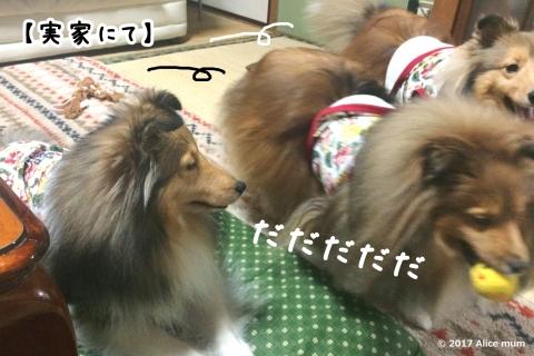 4m - コピー