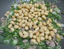 大豆とひき肉の和風炒め 調理④