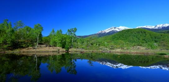 湖面に映える白樺と残雪の乗鞍岳