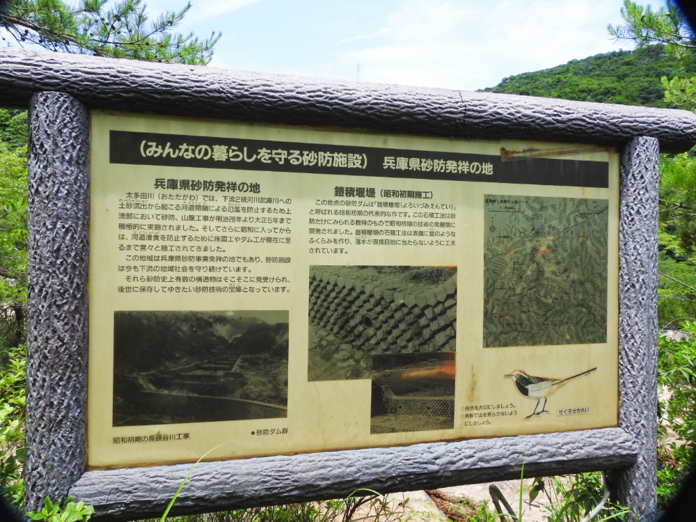 大多田川DSCN2242