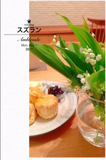 IMG_2905.jpg