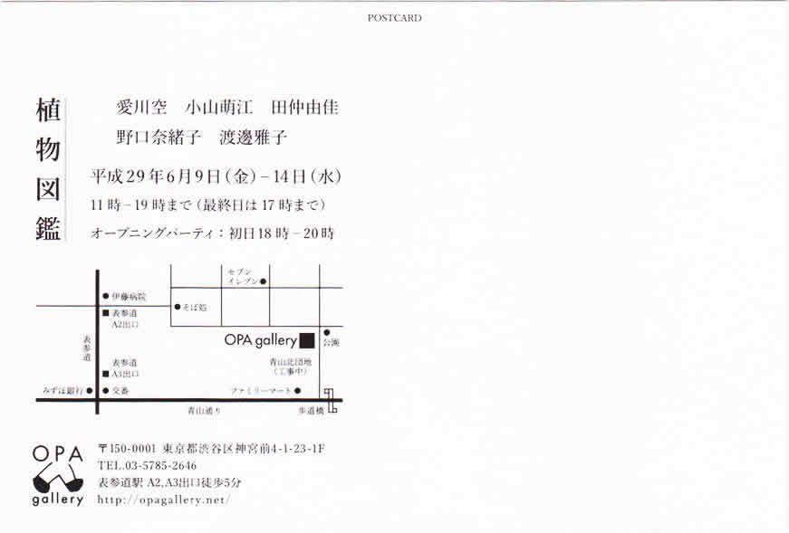 syokubutu_dm01.jpg