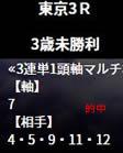 he520_5_2.jpg